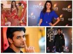 Jhalak Dikhhla Jaa 9 Mandana Tejaswi Arjun Probable Contestants List