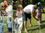 Is Salman Khan Engaged To Iulia Vantur See Their Latest Pictures