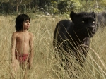 Jungle Book Sequel Confirmed