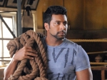 Jayam Ravi Vijay Film Shot In Island Is This About Lemuria Continent