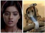 Diya Aur Baati Hum Sandhya To Encounter Takshak Snake Soon