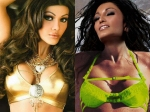 Gorgeous Pictures Of The Lovely Koena Mitra