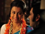 Trisha S Nayagi Is More Comedy Than Horror Director Govi