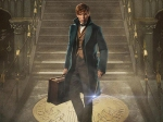 Harry Potter And The Philosopher S Stone Is Eddie Redmayne S Favourite