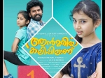 Ann Maria Kalippilanu 3 Days Box Office Collections