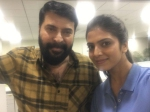 Malavika Mohanan Joins Mammootty The Great Father