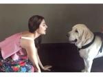 Anushka Sharma Sings Bulleya Song To Her Dog Named Dude