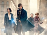David Yates Wont Direct All Five Fantastic Beasts Movies