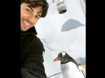 Sidharth Malhotra Meets The Coolest Penguin In New Zealand