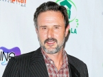 David Arquette Calls Wife Christina Mclarty His Hero