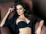 Evelyn Sharma 2017 Success Mantra Is Quite Exciting
