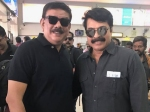 Times When Mammootty Joined Hands With Priyadarshan