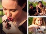 Shocking Angelina Jolie And Her Children Eat Tarantulas
