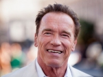 Arnold Schwarzenegger Shoots Down Senate Run Rumours