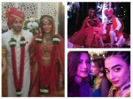 Mandana Karimi Gaurav Gupta Wedding Bash Bani Gauhar Shahid Kapoor Mira Rajput Others Attend Pics