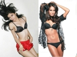 Hot Models Who Turned Towards Bollywood And Could Not Make It Big