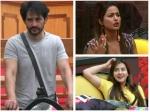 Bigg Boss 11 Hangover Hina Khan Shilpa Shinde Fans Troll Hiten Tejwani Bcl Tweets