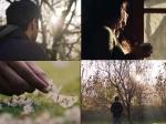 Different Shade Of Love Varun Dhawan Banita Sandhu October Teaser Will Give You Mushy Feels