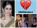 Legendary Actress Sridevi Death Tv Industry Shock Divyanka Tripathi Arjun Bijlani Actors Tribute