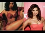 Same To Same Twitteratis Just Discovered A Doppelganager Of Priyanka Chopra In This American Model