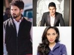 Bhushan Kumar S T Series And Prernaa Arora S Kriaj Settle Hatchet Over Shahid Batti Gul Meter Chalu