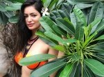 Pooja Bisht Signs Two Films After Breaking Up With Sharad Malhotra Be My Love Is Viral