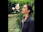 Gauhar Khan Never Thinks A Year Has Gone By This Is How She Celebrated Her Birthday