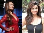 Loveyatri Malaika Arora Daisy Shah Bobby Deol Anusha Dandekar Groove To Chogada
