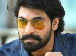 Rana Daggubati To Star In An Action Entertainer Next?