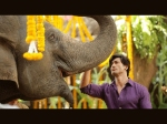 Vidyut Jammwal Junglee Is A Must Watch For Families And Children