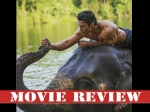 Junglee Movie Review And Rating Vidyut Jammwal