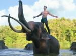 Junglee Trailer Vidyut Jammwal Sets To Protect The Animal Kingdom