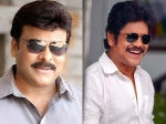 Bigg Boss Telugu 3 After Chiranjeevi Nagarjuna This Actress In Consideration As The Host