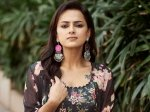 Jersey Beauty Shraddha Srinath S Shocking Comments About Samantha Nani Go Viral