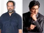 Shahrukh Khan Blames Aanand L Rai For Zero Failure Stops Taking His Calls