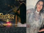 Naagin 4 Promo Is Surbhi Chandna New Naagin Fans Not Happy Chandna Naagin Injustice Rajat Tokas Role