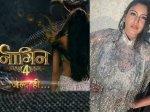 Naagin 4 Promo Is Surbhi Chandna New Naagin Fans Not Happy Chandna Naagin Injustice Rajat Tokas Role