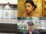 Eid 2019 Shahrukh Khan Priyanka Chopra Akshay Kumar Others Wish Chand Mubarak To Fans