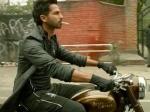 Kabir Singh Box Office Day 3 Collection: Shahid Kapoor On Cloud Nine