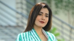 Raashi Khanna Has No Plans Of Doing Bollywood Movies, Here's Why