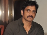 Nagarjuna Berates Parasuram For Shelving Naga Chaitanya's Film?