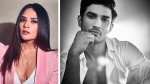 Richa Chadha Slams Troll Questioning 'Silence' On Sushant Singh Rajput's Death; 'How Dare You?'