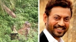 Sutapa Sikdar Responds With Grace To Netizen Questioning Her About The State Of Irrfan Khan's Grave