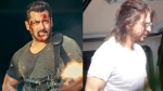 Tiger 3: Salman Khan's Introduction Scene To Have An Important Connection With Shah Rukh Khan's Pathan Climax?