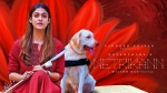 Netrikann Release Date Is Here; The Nayanthara Starrer Is Already A Blockbuster!