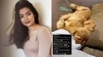 Rashmika Mandanna Shifts Into Her New Apartment In Mumbai; Shares Picture Of Her Pet Aura From The House