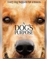 A Dog\'s Purpose