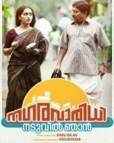 Nagara Varidhi Naduvil Njan