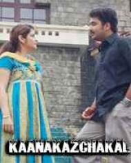 Kaanakazchakal