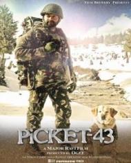 Picket 43
